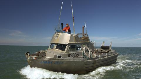 Alaska: pesca in alto mare