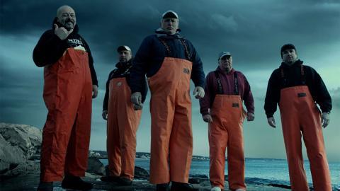 Lupi di mare