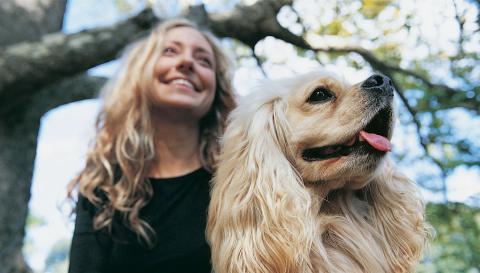 Parrucchieri per cani