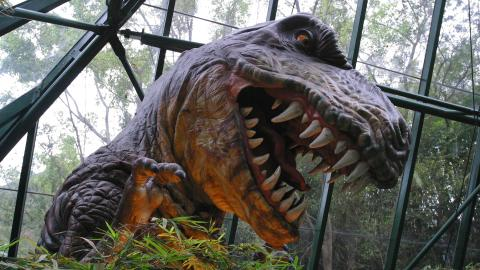 T-Rex: l'evoluzione di un re
