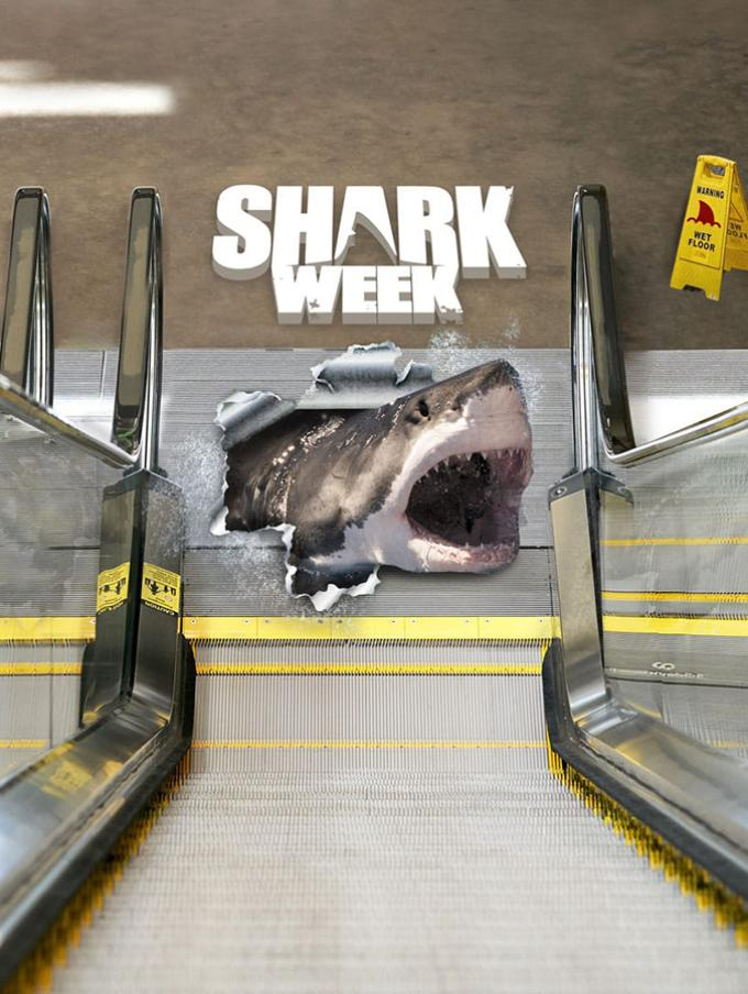 Shark Week 2020 - Dai Caraibi all'Australia, dalla California fino alla Micronesia, la SHARK WEEK torna a stupire con le avventure più incredibili: che cosa si nasconde nel Mare Caraibico dove è stata avvistata una creatura misteriosa? Quali strategie usano gli squali per attaccare le loro prede? Dove si trova il leggendario squalo mako? Tra questi e molti altri interrogativi, gli speciali raccontano anche le storie di chi è sopravvissuto ad attacchi di squali e molto altro ancora!